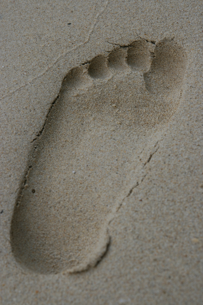 Leave Nothing But Foot Print