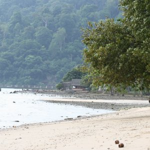 Tioman Beach near ABC